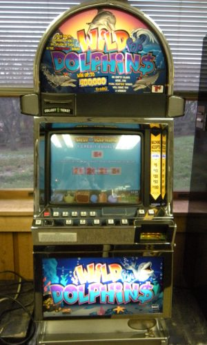 Wild for Dolphins video slot machine