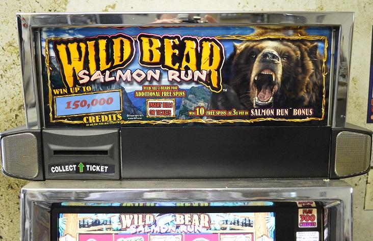 Wild Bear Slots