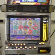 Twin Win video slot machine