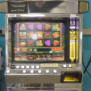 Video Slot Machine Hoot Loot