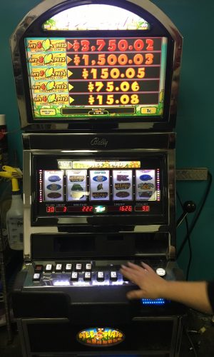 Hee Haw slot machine