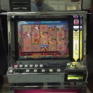 Coyote Moon video slot
