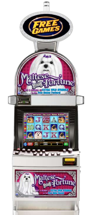 Maltese Fortune video slot machine