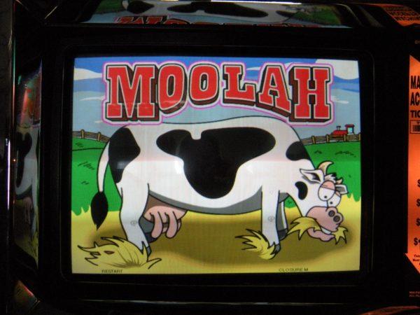 Moolah Cow Slot Machine