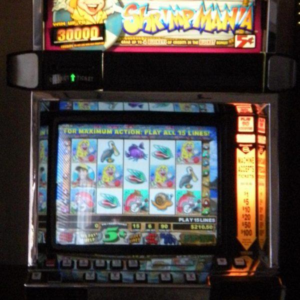 Super Sally's Shrimpmania video slot machine