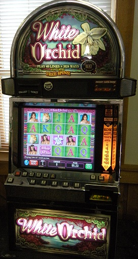 White Orchid video slot