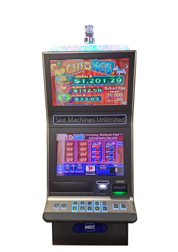 Cats N Dogs slot machine